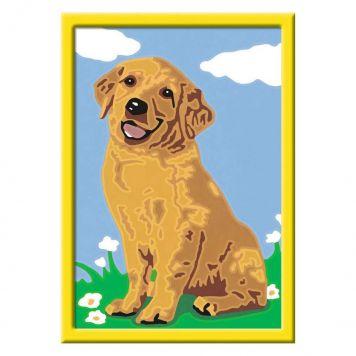 Schilder Op Nummer Lieve Puppy