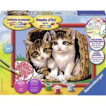Schilder Op Nummer Katjes In Een Mand