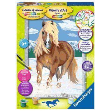 Schilder Op Nummer Paard In De Sneeuw