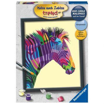 Schilder Op Nummer Bonte Zebra