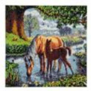 Crystal Art Paarden