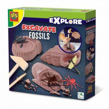 SES Explore Fossielen Opgraven