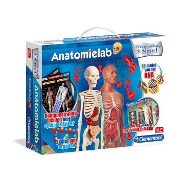 Wetenschap Anatomielab