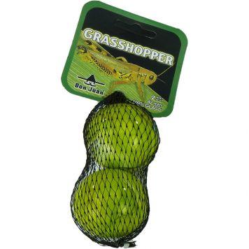 Bonken Grasshopper 2 X 42 MM