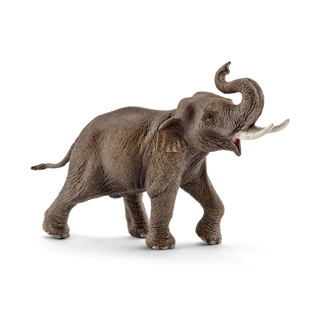 Afbeelding van Schleich Aziatische olifant Mannetje