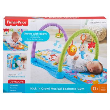 Fisher Price Seahorse Gym