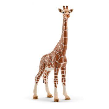 Schleich 14750 Giraf, Wijfje