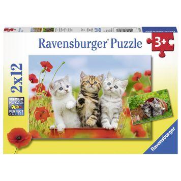 Puzzel Katjes Op Ontdekkingsreis 2 x 12 Stukjes