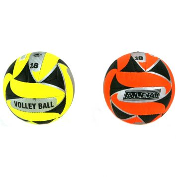 Volleybal 270 Gr 2 Assorti Alert